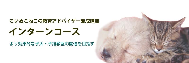 より効果的な子犬・子猫教室の開催を目指す